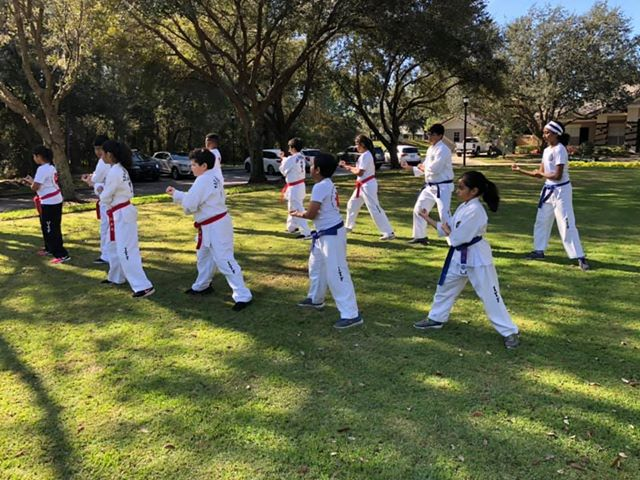 August 5th-10, Summer Camp including International Instructor's Course, Referee's Course, and  Black belt testing at Fishhawk Taekwon-do in Lithia, Florida